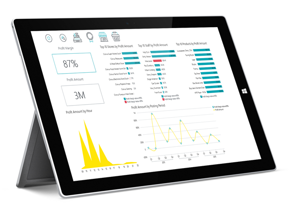 FT LS BI-Build custom reports from a robust Data Warehouse-tablet-surface pro