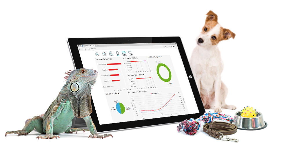industry-pet store-tablet-LS BI