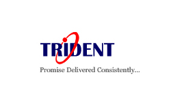 Trident Information Systems logo
