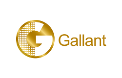 Gallant Computer co. Ltd.