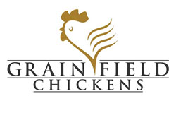 Grain Field Chickens