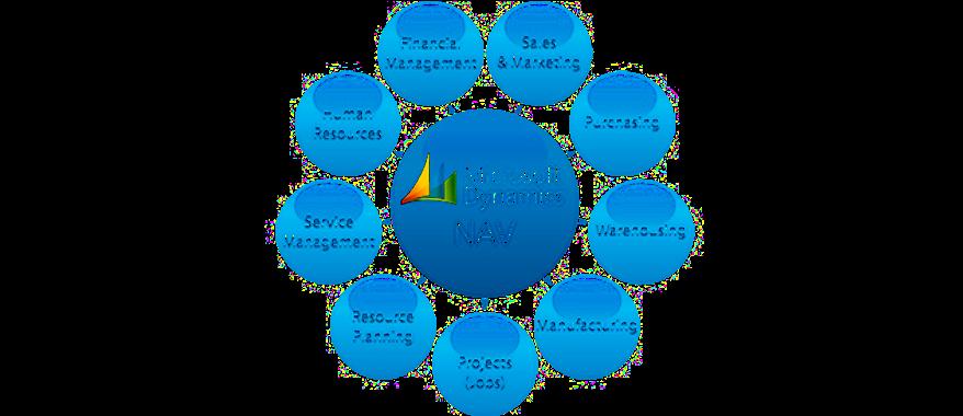 Microsoft Dynamics NAV, Present and Future