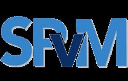 SPVM Consultores